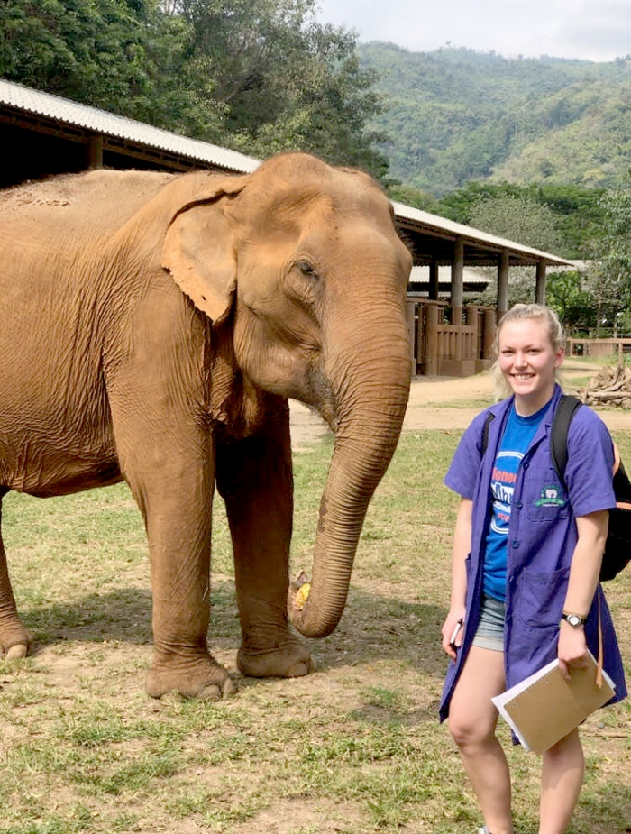 Steuben woman, 21, helps elephants and dogs through Thailand